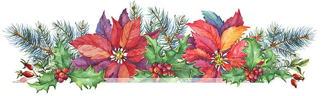 festive christmas top image